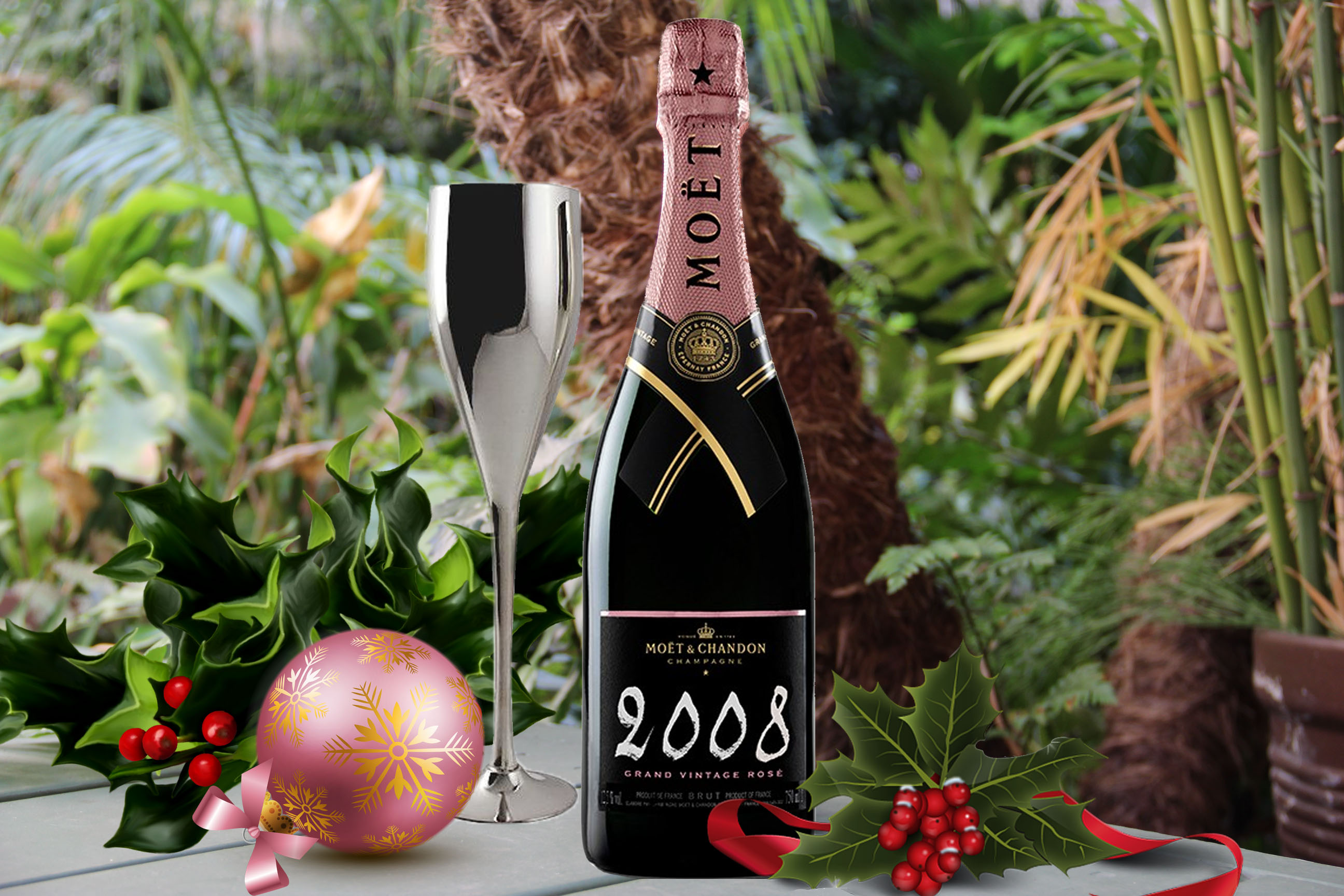 Moet & Chandon champagne for new year's eve