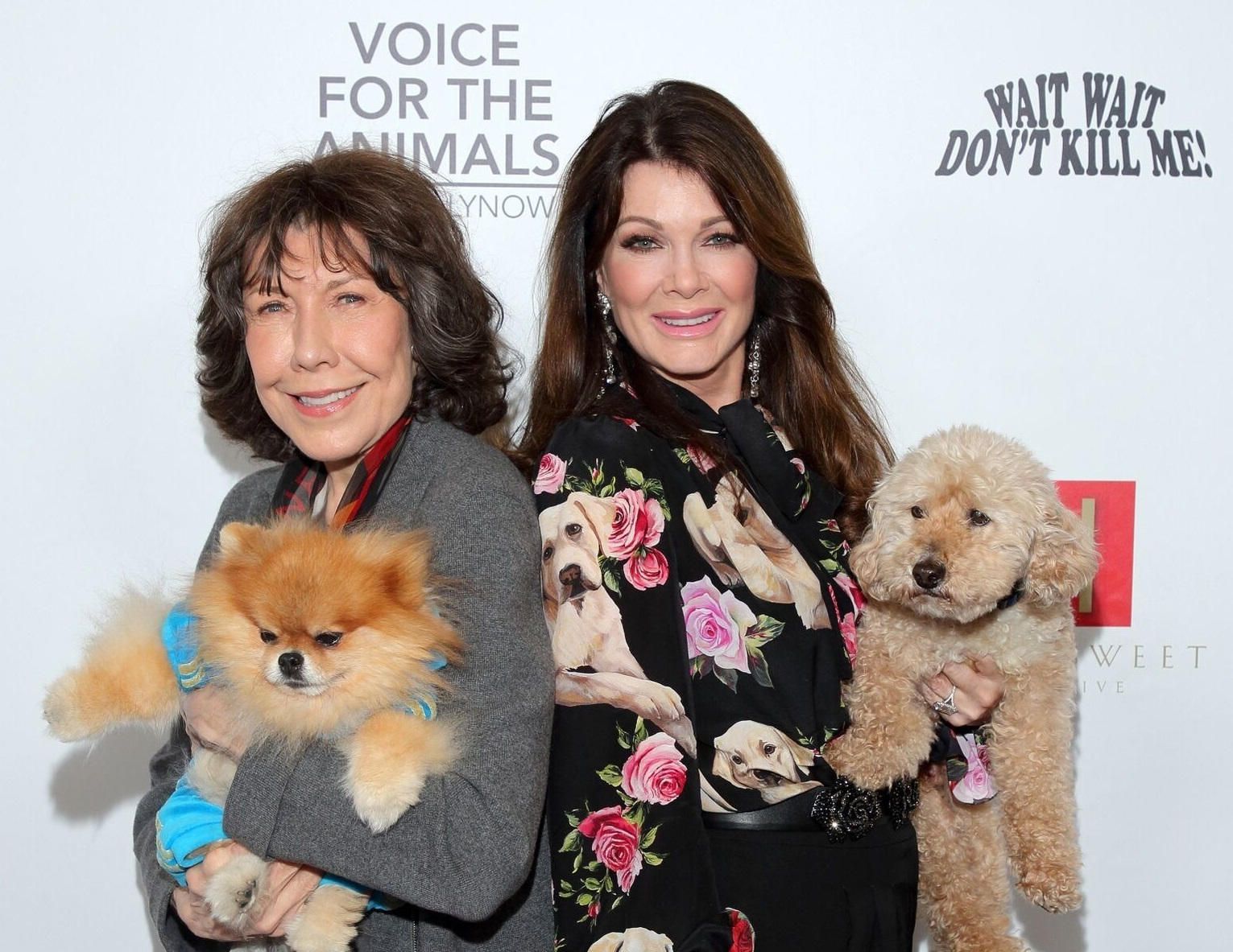 voice for animals foundation, lily tomlin