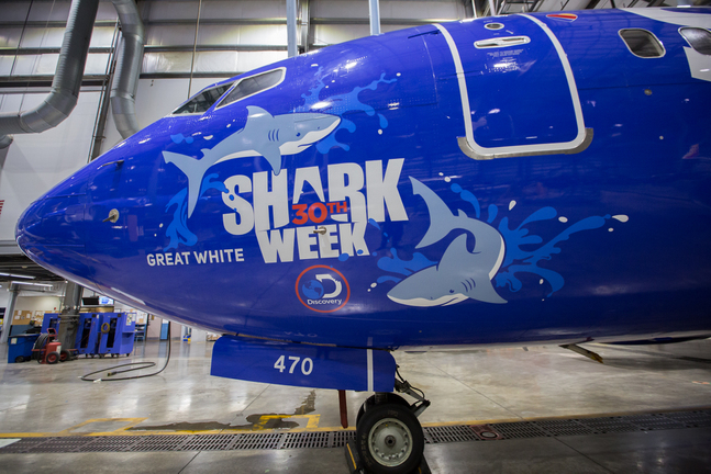 shark week, southwest