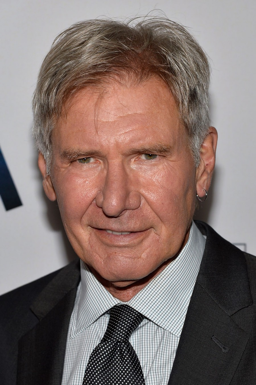 Harrison Ford Cast In Lionsgate's