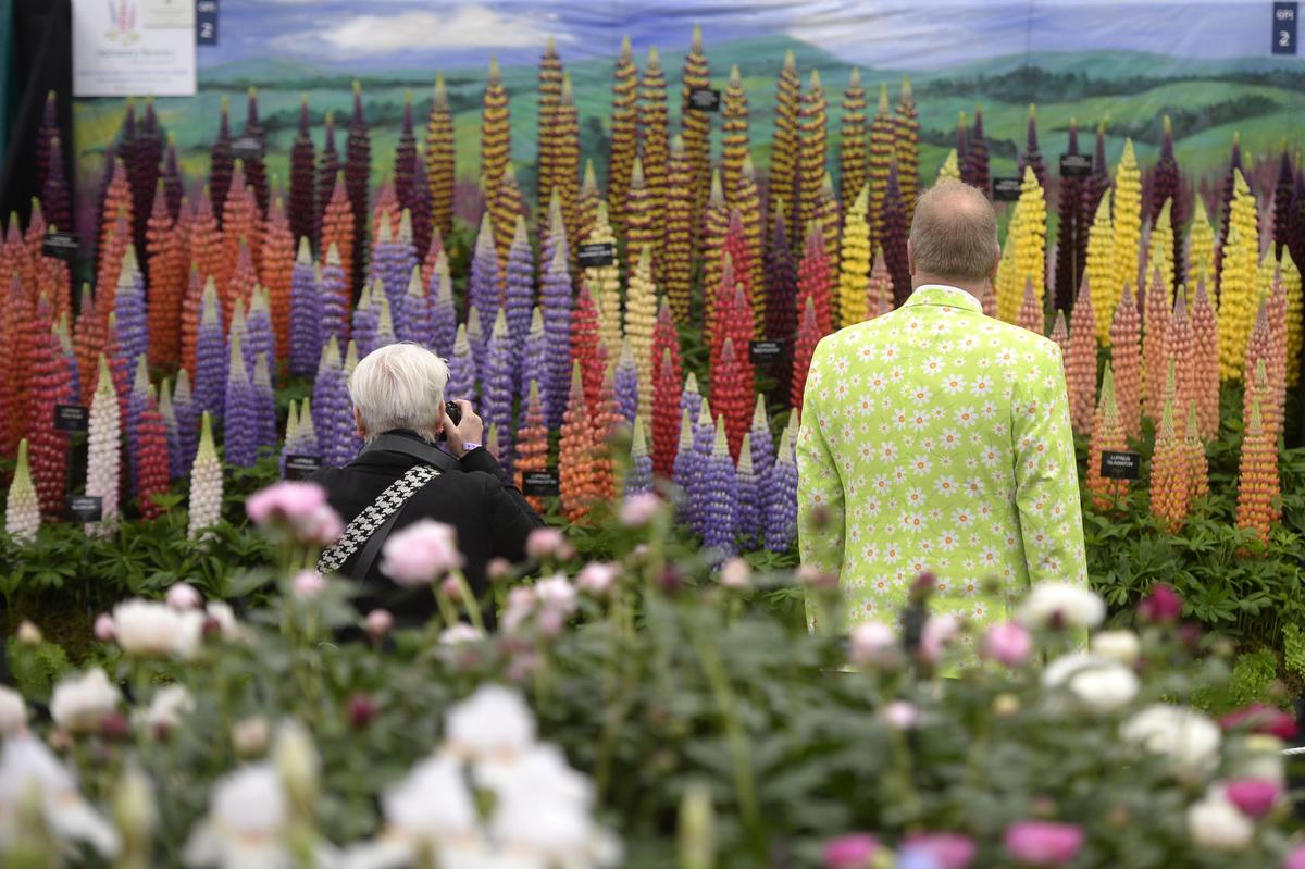 2016 Chelsea Flower Show The Art The English Garden