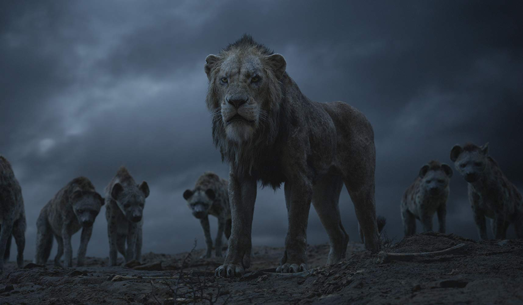The Lion King, film review, Lucas Mirabella