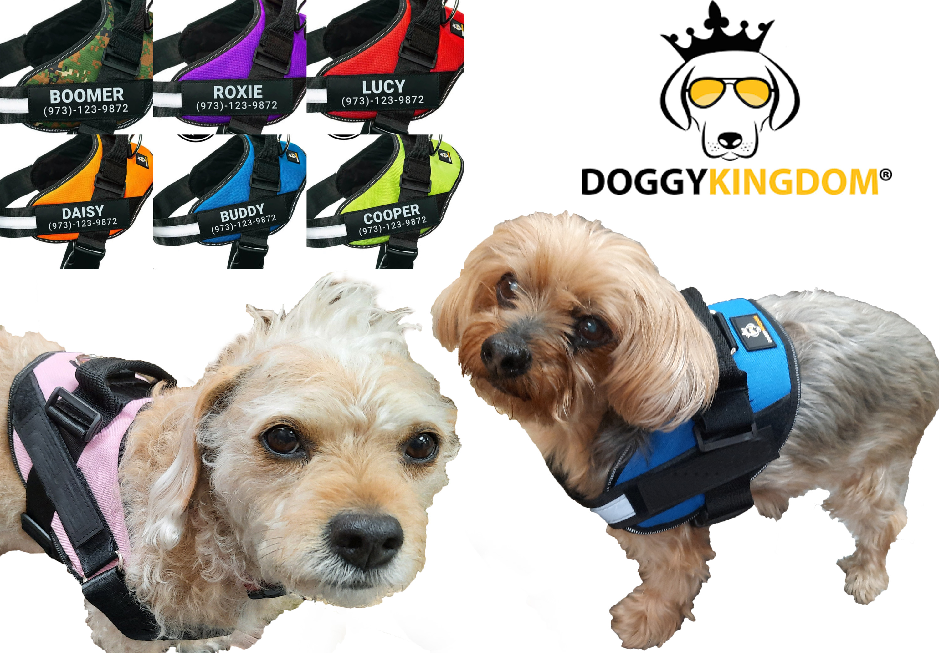 doggy kingdom, no pull harness, dog review